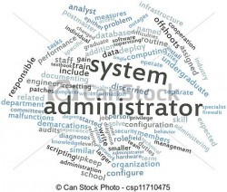 Job Description. System Administrator