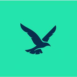 derringo logo newest best
